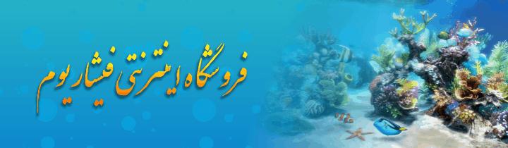 طراحی سایت وبسایت وب برند فروشگاه اینترنتی فیشاریومFishariyom Site web website brand